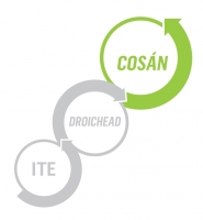 ESCI/Cosán Interactive Workshop Series - Adapting to Change, Reflecting for the Future