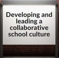 Developing and Leading a Collaborative School Culture (PP)