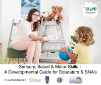 Sensory, Social & Motor Skills - A Developmental Guide for Educators & SNAs