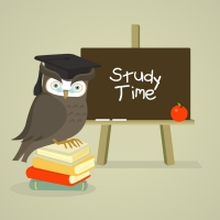 Successful Study & Learning: Supporting Your Child